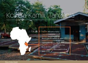 Buy Kokoa Kamili fine flavour beans at Cocoanect.